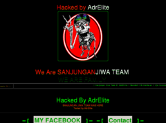 Thumbnail of defaced www.crazy-ivory.de