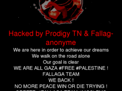 Thumbnail of defaced irisbaron.co.il