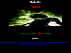 Thumbnail of defaced www.mikesoft.com.pk