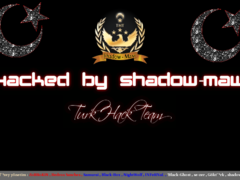 Thumbnail of defaced fs.my