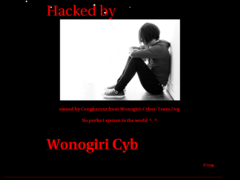 Thumbnail of defaced www.intersa.ec