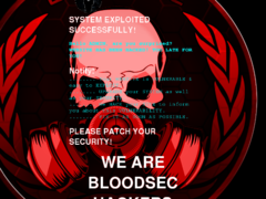 Thumbnail of defaced forum.crhjcentre.dz