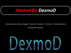 Thumbnail of defaced www.ganb.uscourts.gov