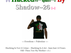 Thumbnail of defaced choigameonline.mobi