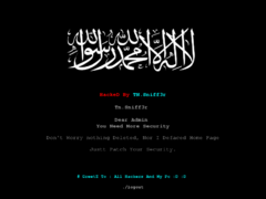 Thumbnail of defaced www.belastingdienst.sr