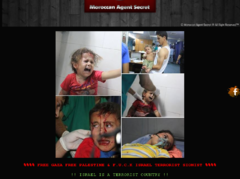 Thumbnail of defaced globalrede.org