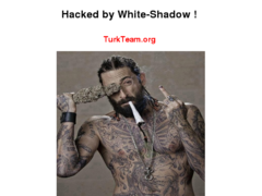 Thumbnail of defaced tpy.com.py