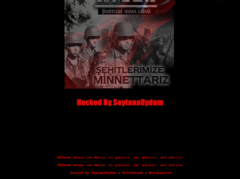 Thumbnail of defaced eniomatrix.cz