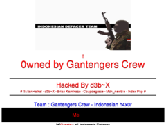 Thumbnail of defaced cemh.org.hn
