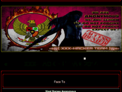 Thumbnail of defaced viasky.net